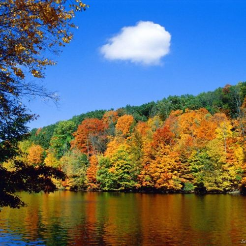 Autumn and river christian wallpaper free download. Use on PC, Mac, Android, iPhone or any device you like.