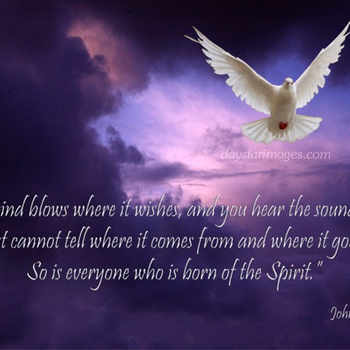 Born of the Spirit christian wallpaper free download. Use on PC, Mac, Android, iPhone or any device you like.