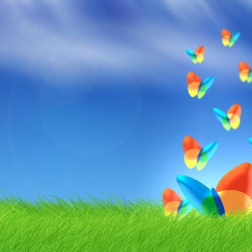 Butterfly – msn christian wallpaper free download. Use on PC, Mac, Android, iPhone or any device you like.