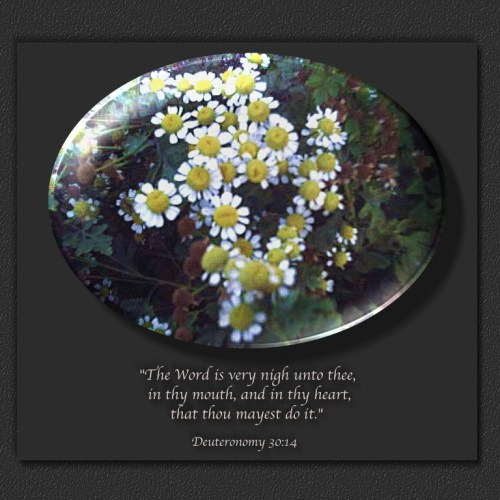 Deuteronomy 30:14 christian wallpaper free download. Use on PC, Mac, Android, iPhone or any device you like.