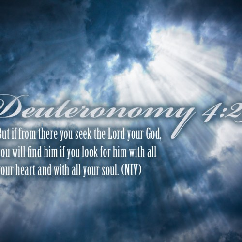 Deuteronomy 4:29 christian wallpaper free download. Use on PC, Mac, Android, iPhone or any device you like.