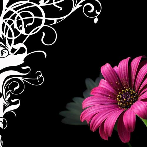 Flower christian wallpaper free download. Use on PC, Mac, Android, iPhone or any device you like.