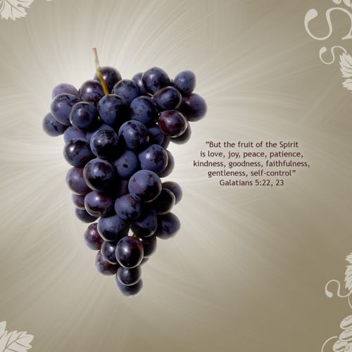 Galatian 5:22-23 christian wallpaper free download. Use on PC, Mac, Android, iPhone or any device you like.