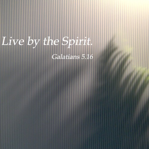 Galatians 5:16 christian wallpaper free download. Use on PC, Mac, Android, iPhone or any device you like.