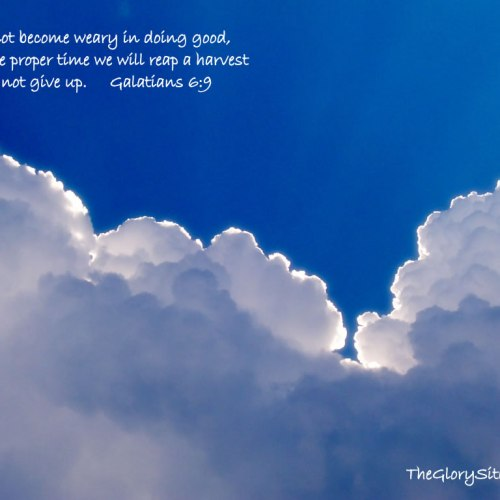 Galatians 6:9 christian wallpaper free download. Use on PC, Mac, Android, iPhone or any device you like.