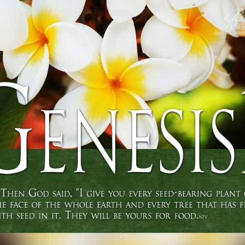 Genesis 1:29 christian wallpaper free download. Use on PC, Mac, Android, iPhone or any device you like.