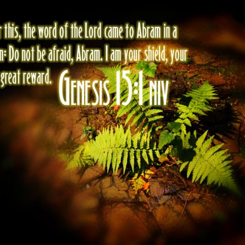 Genesis 15:1 christian wallpaper free download. Use on PC, Mac, Android, iPhone or any device you like.