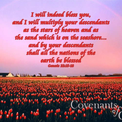 Genesis 22:15-18 christian wallpaper free download. Use on PC, Mac, Android, iPhone or any device you like.