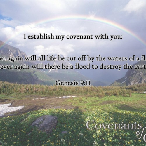 Genesis 9:11 christian wallpaper free download. Use on PC, Mac, Android, iPhone or any device you like.