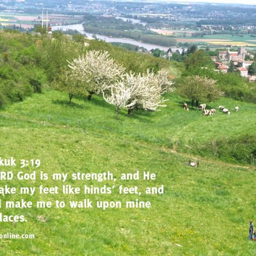 Habakkuk 3:19 christian wallpaper free download. Use on PC, Mac, Android, iPhone or any device you like.