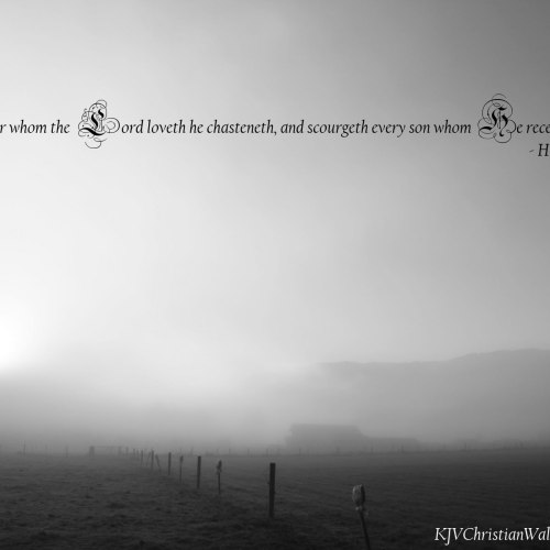 Hebrews 12:6 christian wallpaper free download. Use on PC, Mac, Android, iPhone or any device you like.