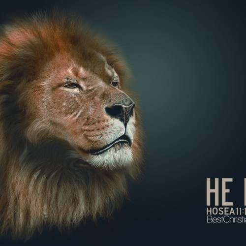 Hosea 11:10 christian wallpaper free download. Use on PC, Mac, Android, iPhone or any device you like.