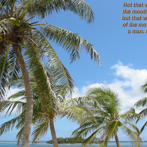 Isaiah 4:6 christian wallpaper free download. Use on PC, Mac, Android, iPhone or any device you like.