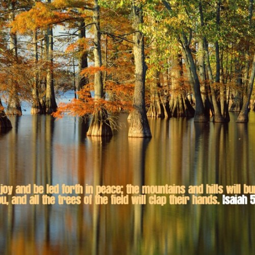 Isaiah 55:12 christian wallpaper free download. Use on PC, Mac, Android, iPhone or any device you like.