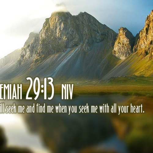 Jeremiah 29:13 christian wallpaper free download. Use on PC, Mac, Android, iPhone or any device you like.