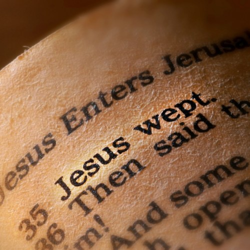 Jesus wept christian wallpaper free download. Use on PC, Mac, Android, iPhone or any device you like.
