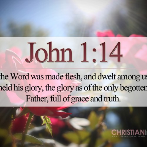 John 1:14 christian wallpaper free download. Use on PC, Mac, Android, iPhone or any device you like.