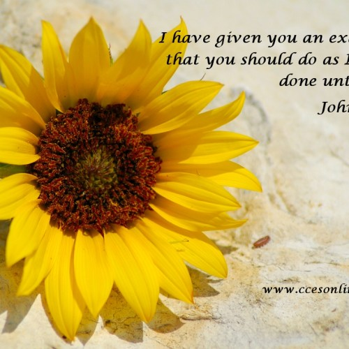 John 13:15 christian wallpaper free download. Use on PC, Mac, Android, iPhone or any device you like.