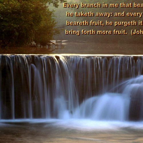 John 15:2 christian wallpaper free download. Use on PC, Mac, Android, iPhone or any device you like.