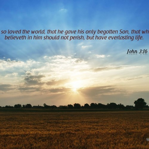 John 3:16 christian wallpaper free download. Use on PC, Mac, Android, iPhone or any device you like.