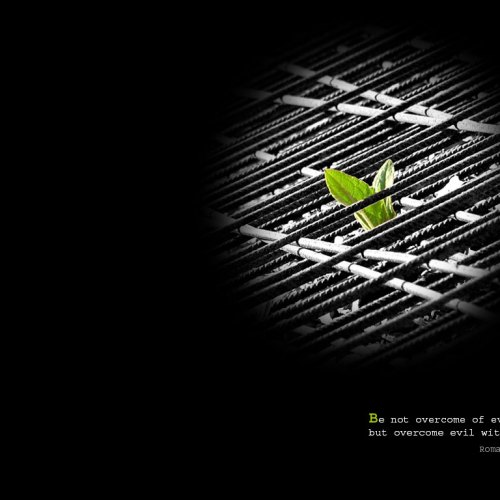 Leaf christian wallpaper free download. Use on PC, Mac, Android, iPhone or any device you like.