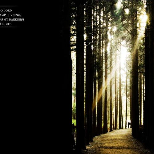 Light way christian wallpaper free download. Use on PC, Mac, Android, iPhone or any device you like.
