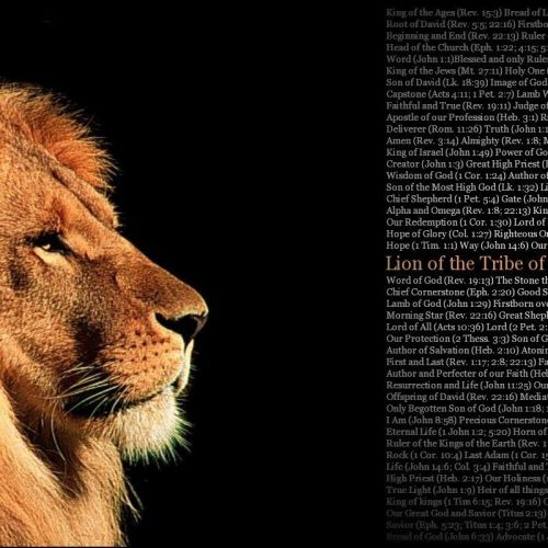 Lion of tribe Judah christian wallpaper free download. Use on PC, Mac, Android, iPhone or any device you like.