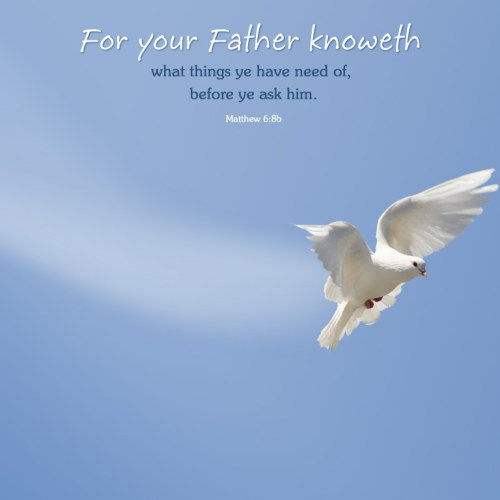 Matthew 6:8b christian wallpaper free download. Use on PC, Mac, Android, iPhone or any device you like.