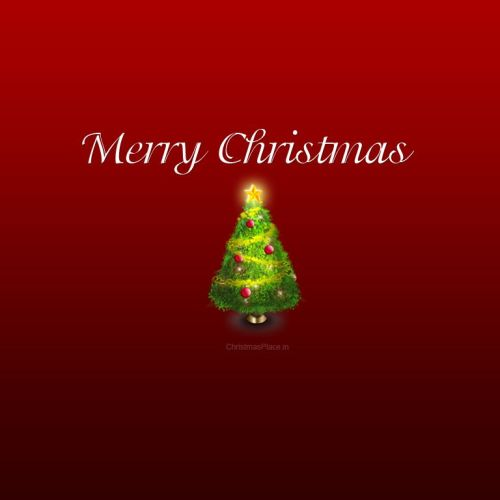 Merry Christmas – Tree christian wallpaper free download. Use on PC, Mac, Android, iPhone or any device you like.
