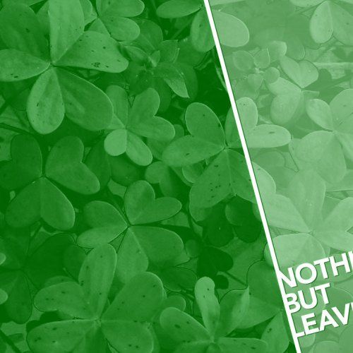Nothing but Leaves christian wallpaper free download. Use on PC, Mac, Android, iPhone or any device you like.