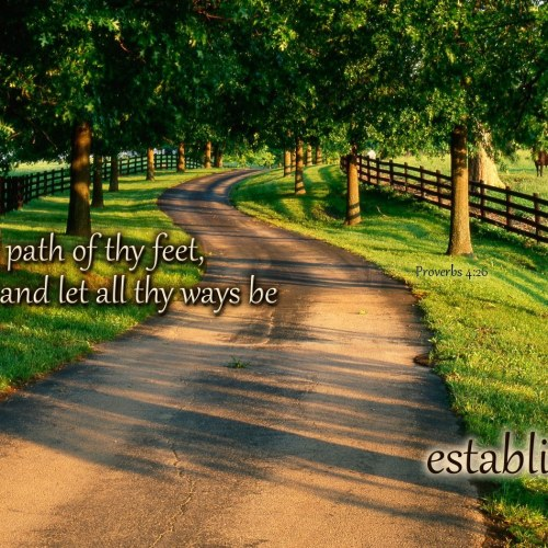Proverb 4:26 christian wallpaper free download. Use on PC, Mac, Android, iPhone or any device you like.