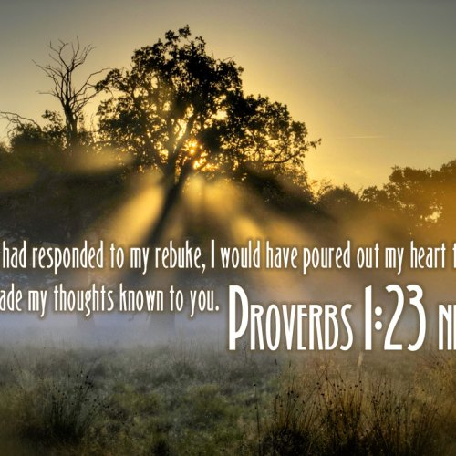 Proverbs 1:23 christian wallpaper free download. Use on PC, Mac, Android, iPhone or any device you like.