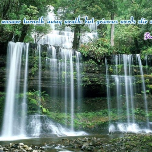 Proverbs 15:1 christian wallpaper free download. Use on PC, Mac, Android, iPhone or any device you like.