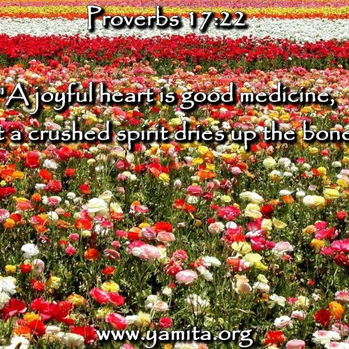 Proverbs 17:22 christian wallpaper free download. Use on PC, Mac, Android, iPhone or any device you like.