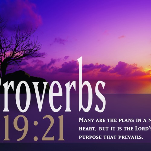Proverbs 19:21 christian wallpaper free download. Use on PC, Mac, Android, iPhone or any device you like.