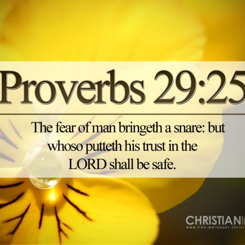 Proverbs 29:25 christian wallpaper free download. Use on PC, Mac, Android, iPhone or any device you like.