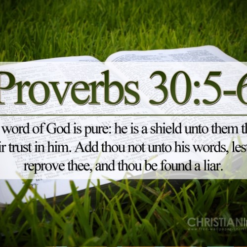 Proverbs 30:5-6 christian wallpaper free download. Use on PC, Mac, Android, iPhone or any device you like.