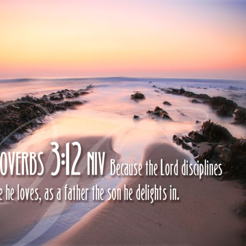 Proverbs 3:12 christian wallpaper free download. Use on PC, Mac, Android, iPhone or any device you like.