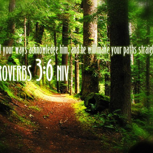 Proverbs 3:6 christian wallpaper free download. Use on PC, Mac, Android, iPhone or any device you like.