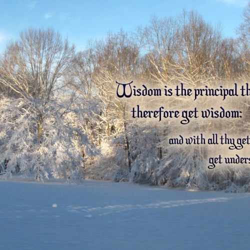 Proverbs 4:7 christian wallpaper free download. Use on PC, Mac, Android, iPhone or any device you like.