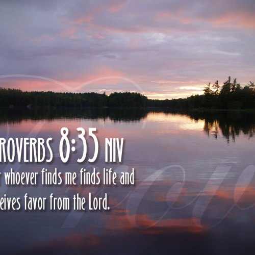 Proverbs 8:35 christian wallpaper free download. Use on PC, Mac, Android, iPhone or any device you like.