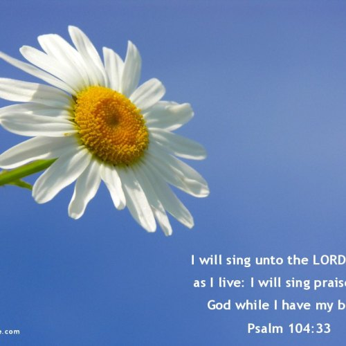 Psalm 104:33 christian wallpaper free download. Use on PC, Mac, Android, iPhone or any device you like.