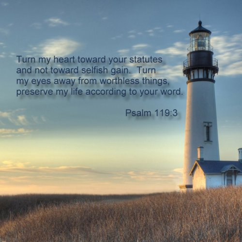 Psalm 119:3 christian wallpaper free download. Use on PC, Mac, Android, iPhone or any device you like.