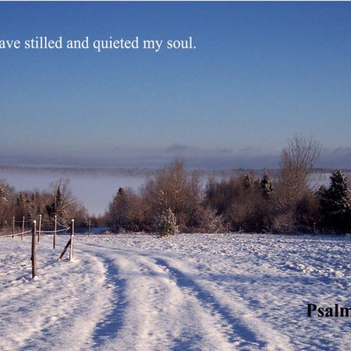 Psalm 131:2 christian wallpaper free download. Use on PC, Mac, Android, iPhone or any device you like.