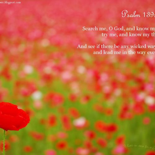 Psalm 139:23-24 christian wallpaper free download. Use on PC, Mac, Android, iPhone or any device you like.