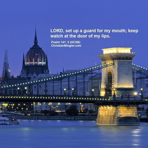 Psalm 141:3 christian wallpaper free download. Use on PC, Mac, Android, iPhone or any device you like.