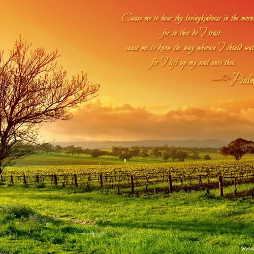 Psalm 143:8 christian wallpaper free download. Use on PC, Mac, Android, iPhone or any device you like.