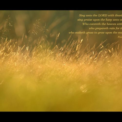 Psalm 147:7-8 christian wallpaper free download. Use on PC, Mac, Android, iPhone or any device you like.