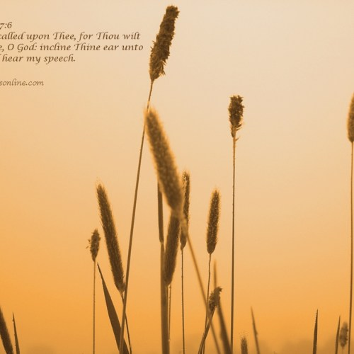 Psalm 17:6 christian wallpaper free download. Use on PC, Mac, Android, iPhone or any device you like.