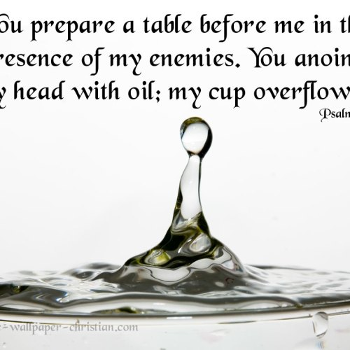 Psalm 23:5 christian wallpaper free download. Use on PC, Mac, Android, iPhone or any device you like.